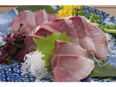 日本急凍刺身油甘魚柳【皮付】- 2KG UP